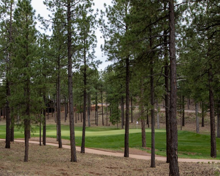 photo depicting the ambiance of a flagstaff golf course community and a green amongst the pine trees